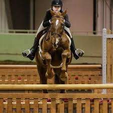 Hunter Jumpers Exhibitors of Oklahoma Fall Finale