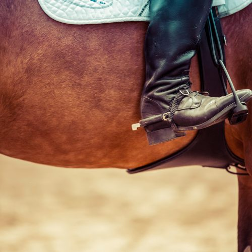 Hunter Jumper Exhibitors of Oklahoma Fall Finale
